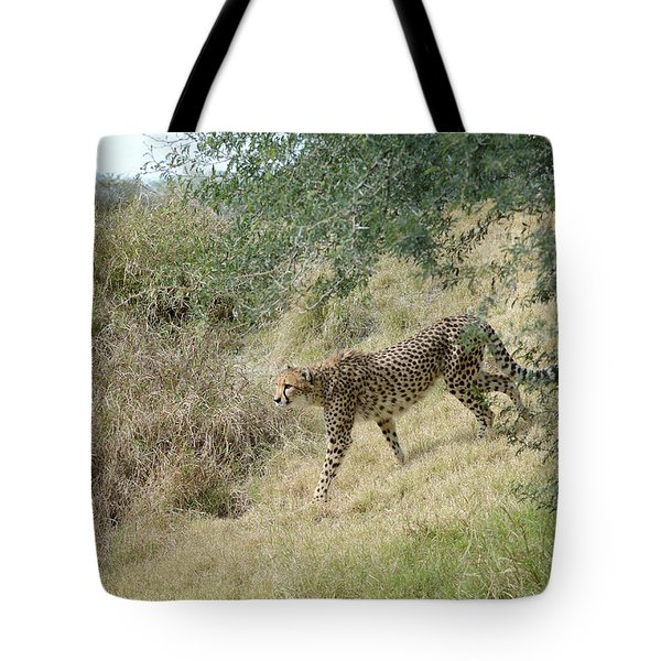 Tote Bag featuring the photograph Descent by Fraida Gutovich
