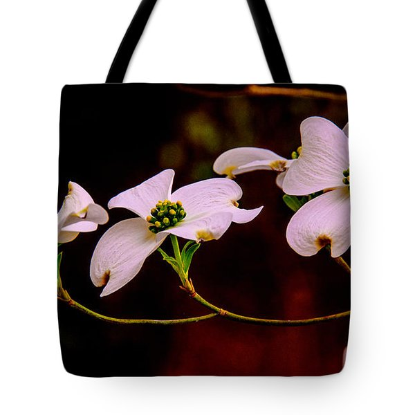 3 Dogwood Blooms On A Branch Tote Bag