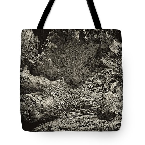 Tote Bag featuring the photograph Driftwood by Hugh Smith