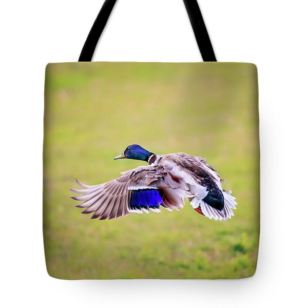 Duck-drake Tote Bag