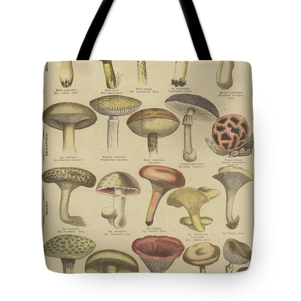 Edible And Poisonous Mushrooms Tote Bag