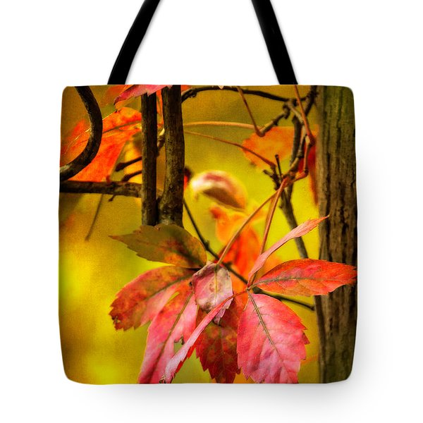 Fall Colors Tote Bag by Eduard Moldoveanu