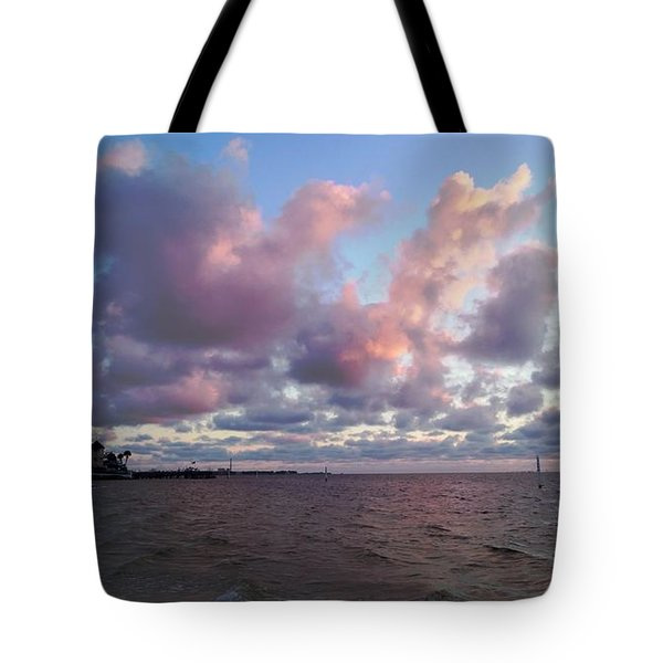 Tote Bag featuring the photograph Florida Sunset by Vicky Tarcau