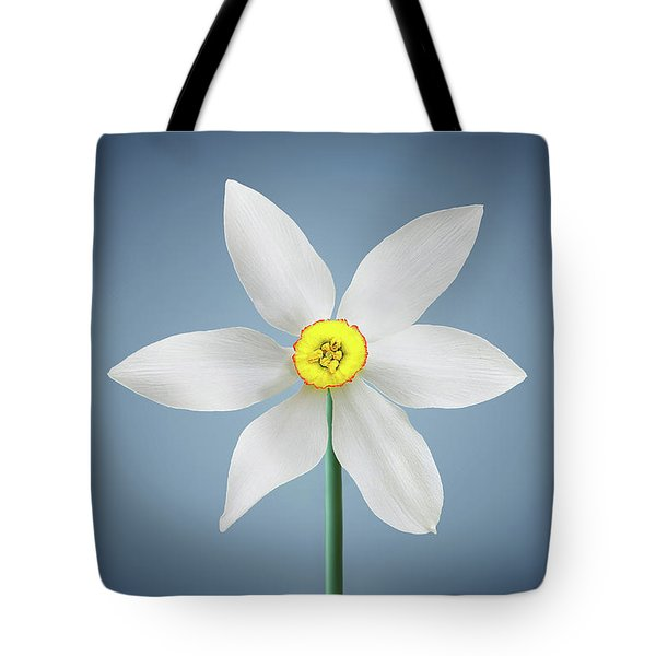 Tote Bag featuring the photograph Flower Paradise by Bess Hamiti