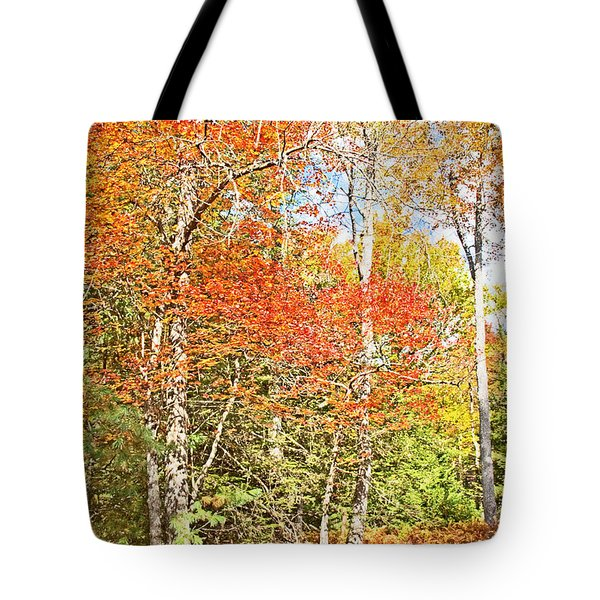 Tote Bag featuring the digital art Forest Interior Autumn Pocono Mountains Pennsylvania by A Gurmankin