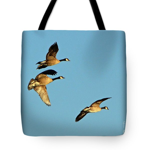 3 Geese In Flight Tote Bag