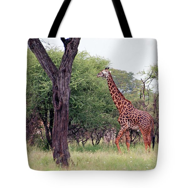 Giraffes Eating Acacia Trees Tote Bag