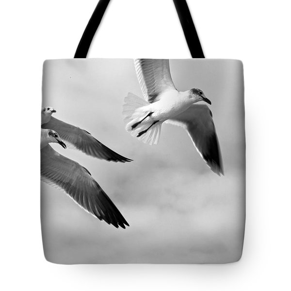 3 Gulls Tote Bag