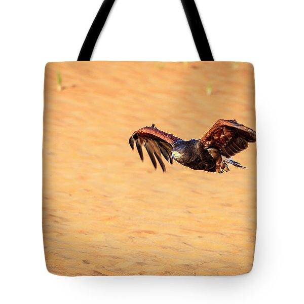 Tote Bag featuring the photograph Harris Hawk by Alexey Stiop