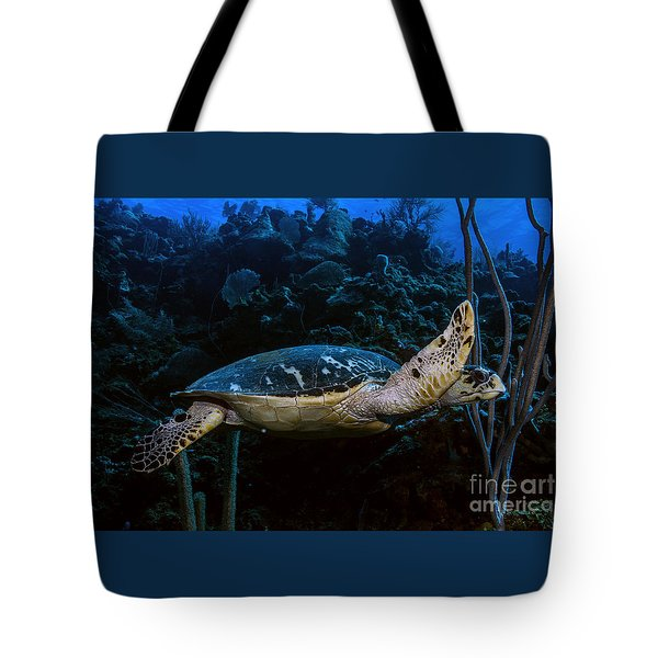 Tote Bag featuring the photograph Hawksbill Turtle by JT Lewis