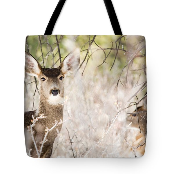 Herd Of Mule Deer In Deep Snow Tote Bag