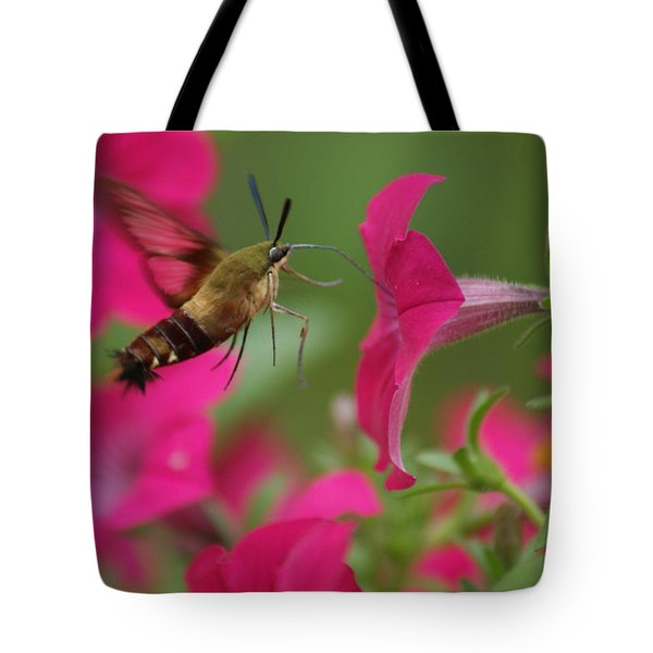 Hummer Moth Tote Bag by Heidi Poulin