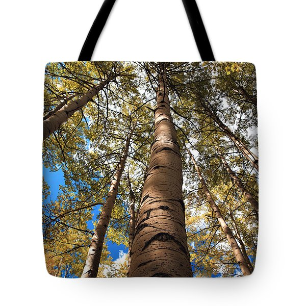 Looking Up Tote Bag by Marilyn Hunt
