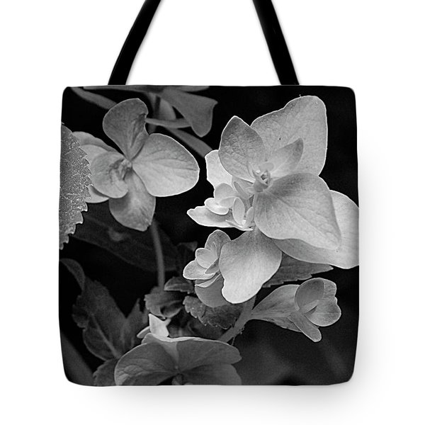 Magnolia Plantation And Gardens Collection Tote Bag by DigiArt Diaries by Vicky B Fuller