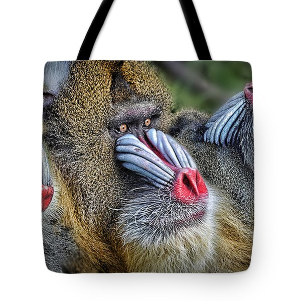 3 Male Mandrills  Tote Bag