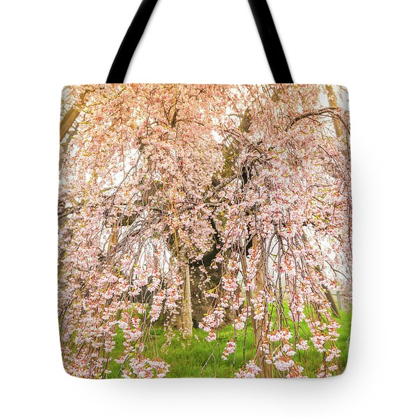 Tote Bag featuring the photograph Miharu Takizakura Weeping Cherry04 by Tatsuya Atarashi