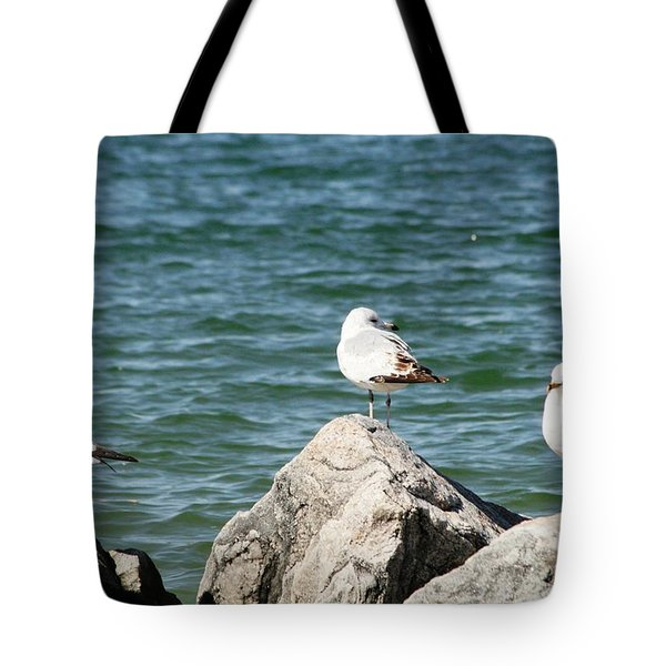 3 Of Them At Sea Tote Bag
