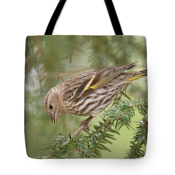 Pine Siskin Tote Bag by Alan Lenk
