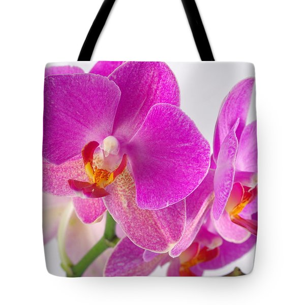 Tote Bag featuring the photograph Pink Orchid by Dariusz Gudowicz