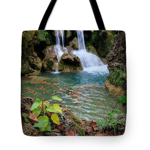 Price Falls In Autumn Color.  Tote Bag