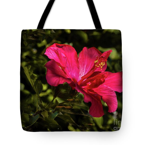 Tote Bag featuring the photograph Red Hibiscus by Robert Bales
