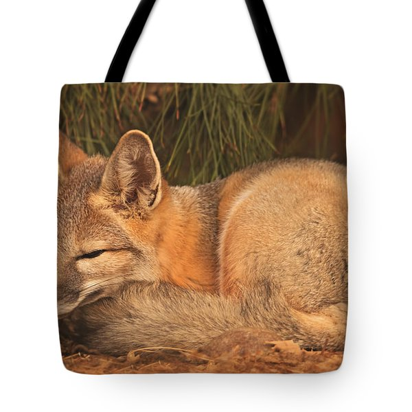 San Joaquin Kit Fox  Tote Bag