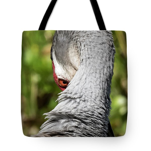 Tote Bag featuring the photograph Sand Hill Crane by Michael D Miller