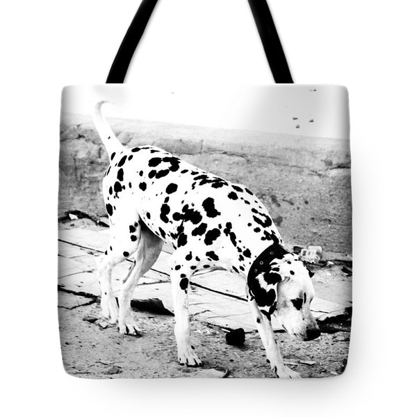 Tote Bag featuring the photograph Spotted by Jez C Self