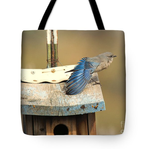 Spread Your Wings Tote Bag by Mike Dawson
