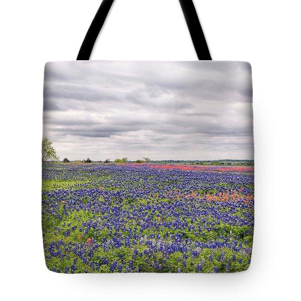 Texas Wildflowers 2 Tote Bag