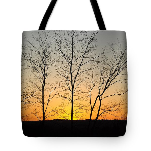 3 Trees Tote Bag