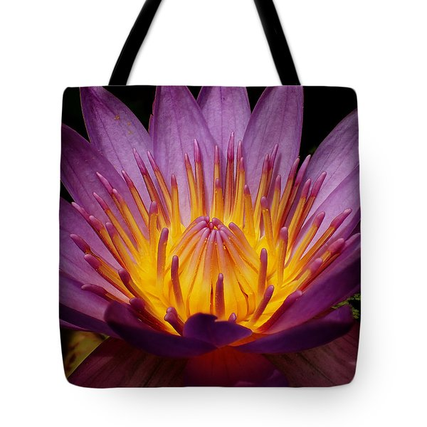Water Lily Tote Bag by Farol Tomson