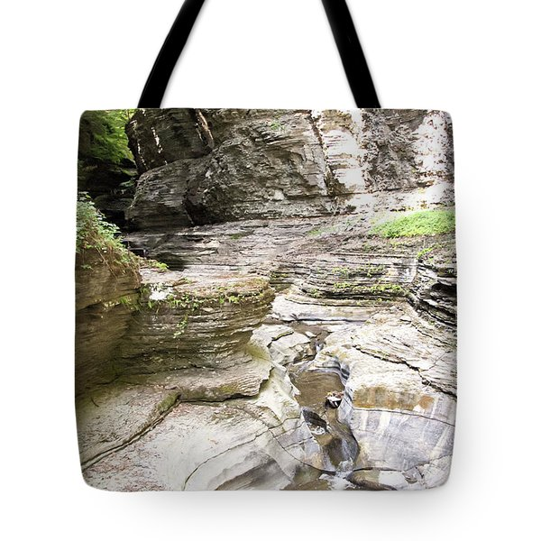 Watkins Glen New York Tote Bag
