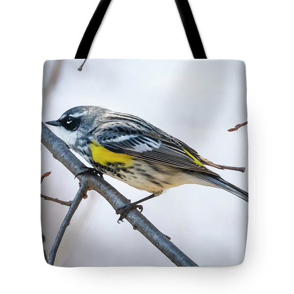 Tote Bag featuring the photograph Yellow-rumped Warbler  by Ricky L Jones