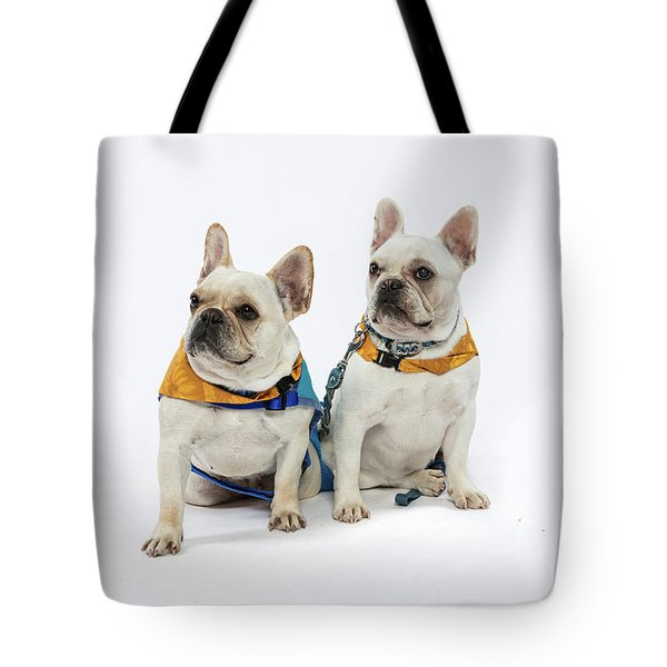 3010.062 Therapet Tote Bag