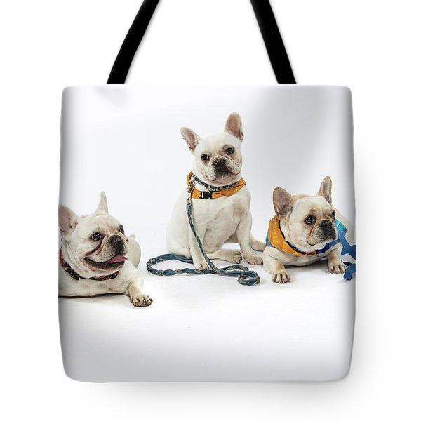 3010.064 Therapet Tote Bag