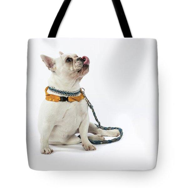3010.067 Therapet Tote Bag