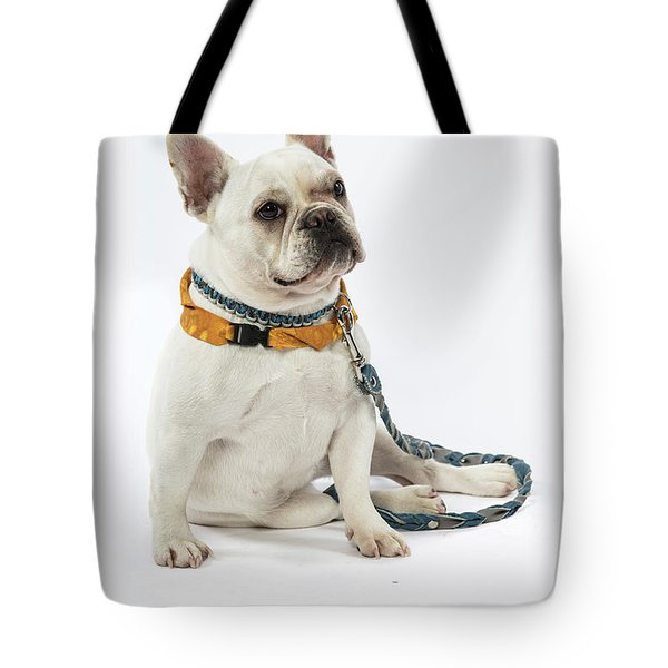 3010.068 Therapet Tote Bag by M K  Miller