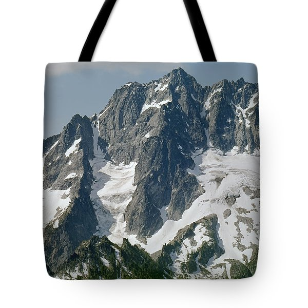304630 North Face Mt. Stuart Tote Bag