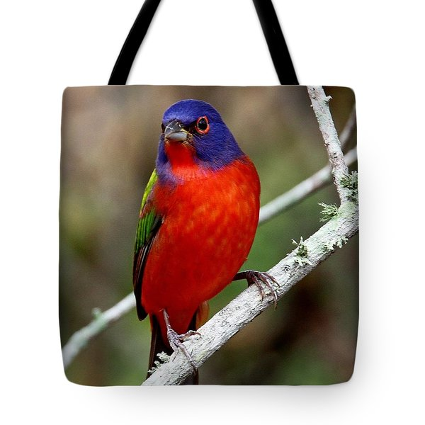 Painted Bunting Tote Bag