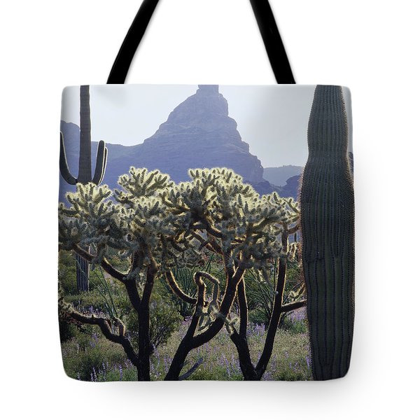 313737 Montezumas Head Tote Bag