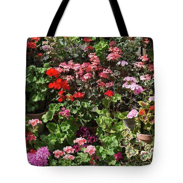 Fine Art Tote Bag