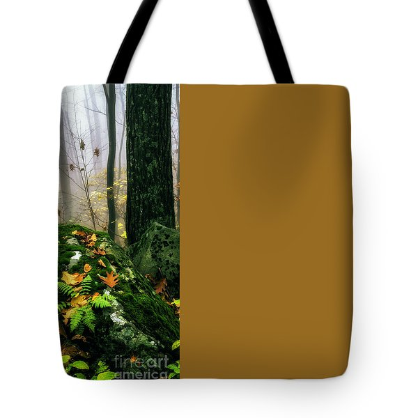 Autumn Monongahela National Forest Tote Bag by Thomas R Fletcher