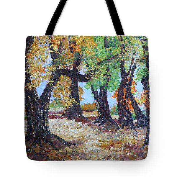 #35 Cottonwood Colors Tote Bag