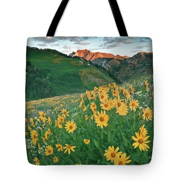 Albion Basin Wildflowers Tote Bag