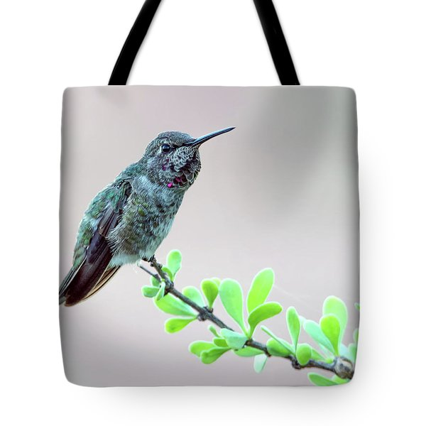Anna's Hummingbird Tote Bag