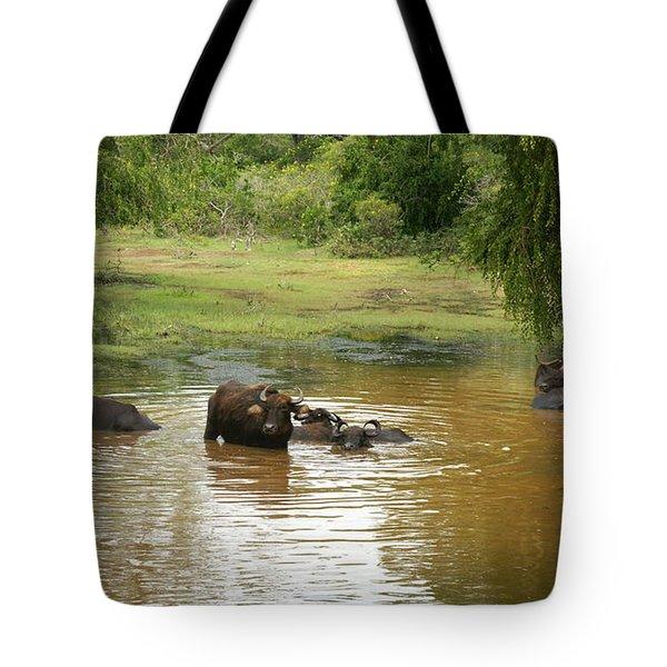 Buffalos Tote Bag