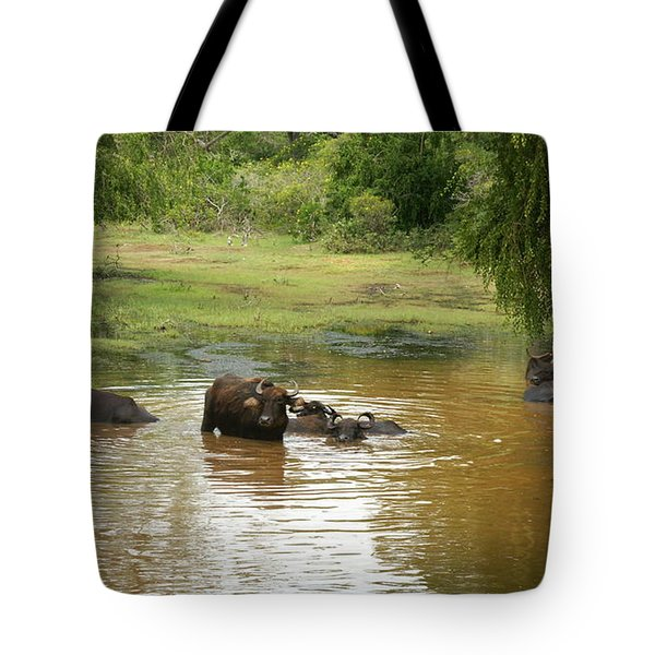 Tote Bag featuring the photograph Buffalos by Christian Zesewitz