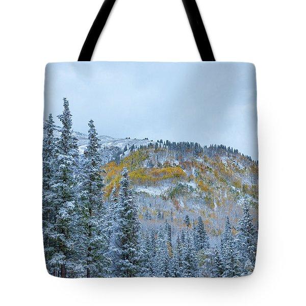 Colorado Fall Foliage 2 Tote Bag
