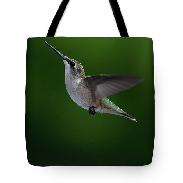 Female Ruby Throated Hummingbird Tote Bag